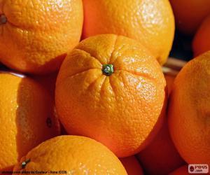 Układanka Pomarańcze