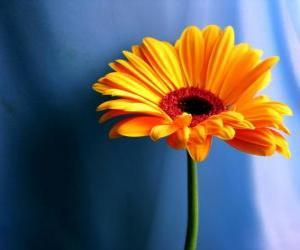 Układanka Prosty kwiat, miły prezent dla matki