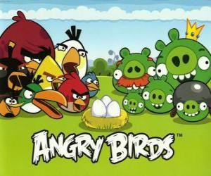 Układanka Ptaki, jaja i zielony świń w Angry Birds
