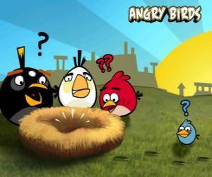 Układanka Ptaki odkryć, że ktoś ukradł jaja z gniazda