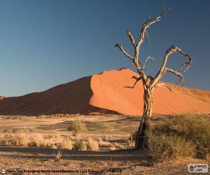 Układanka Pustynia Namib, Namibia