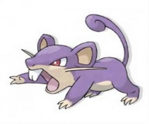 Układanka Rattata - Pokemon normalną czcionką, szybkie ataki szczurów