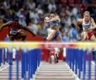 Hurdling, Athlet przeprawy przez przeszkodę zapory