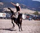 Rodeo - Jeździec w siodle konkurencji bronc, miłośników dzikiego konia