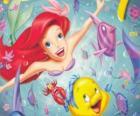 Ariel Mała Syrenka pływanie posługiwanie się jej przyjaciele Sebastiana i Stornia