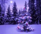 Choinki w Snowy krajobraz z księżyca na niebie