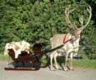 Santa Claus's renifer ciągnący sanie