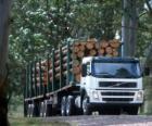 Transport ciężarowy dzienników
