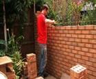 Murarz podniesienie ściany