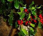 Holly z czerwonych jagód