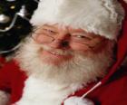Zadowoleni z Santa Claus kapelusz i białą brodę