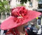 Czerwony Pamela, są bardzo szerokim rondem czapki używany przez kobiety