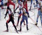 Biathlon na sporty zimowe połączenia narciarstwa biegowego z strzelectwa sportowego.