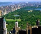 Aerial view of Central Park, Nowy Jork