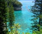 Rafy i ekosystemy, francuski archipelagu Nowej Kaledonii, położone na Oceanie Spokojnym.