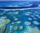 Wielka Rafa Koralowa, rafy koralowe na całym świecie największe. Australia.