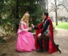 Księcia klęczącego przed księżniczką daje róża