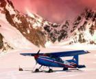 Cessna 185 na śniegu