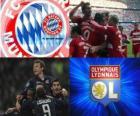 Liga Mistrzów półfinał 2009-10, FC Bayern München - Olympique Lyonnais