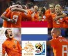 Wybór Holandii, grupy E, RPA 2010