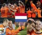 Holandia RPA 2010 finalista