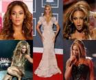 Beyoncé sukcesie solowych albumów ustanowił ją jako jednego z najbardziej artystów w przemyśle muzycznym