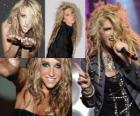 Kesha, amerykańska piosenkarka i autorka tekstów.