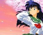 Kagome Higurashi jest reinkarnacją kapłanki Kikyo