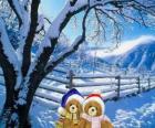 dwa niedźwiedzie bardzo ciepło krajobraz Boże Narodzenie