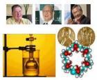 Nagroda Nobla w dziedzinie chemii 2010 - Richard Heck, Eiichi Negishi i Suzuki Akira -