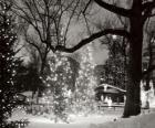 Boże Narodzenie w Parku
