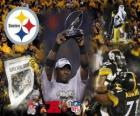 Pittsburgh Steelers mistrz AFC 2010-11