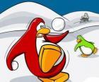 Penguins w wojnie śniegu w Club Penguin