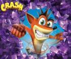 Crash Bandicoot, bohater gry wideo Crash Bandicoot