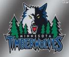 Minnesota Timberwolves logo, zespół NBA. Dywizja Północno-zachodnia, Konferencja zachodnia