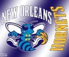 Logo New Orleans Hornets, zespół NBA. Dywizja Południowo-zachodnia, Konferencja zachodnia