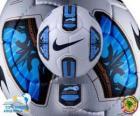 Nike Total 90 Tracer Doma oficjalna piłka Copa América Argentyna 2011