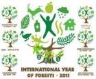 2011 Międzynarodowy Rok Lasów