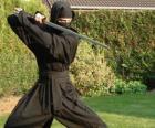 Ninja wojownika i walce z katana