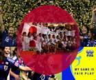 Nagroda FIFA Fair Play w Japonii piłki nożnej 2011 r.