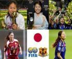 FIFA kobiet Światowy gracz zwycięzca roku 2011 poprzedzającej jej powieści Sawa