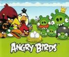 Ptaki, jaja i zielony świń w Angry Birds
