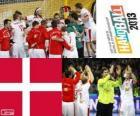 Danii w piłce ręcznej 2013 Pucharu świata srebrny medal