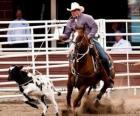 Amerykański Rodeo