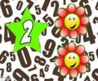 Numer 2 w star dwa kwiaty