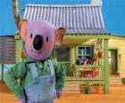 Frank jest jednym z australijskich braci koala