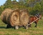 Rolnik z zaprzęgiem koszyka