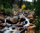 Rzeka górskich