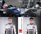 Sauber F1 Team 2013