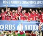 Walijski mistrz 2013 sześciu Narodów